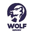 WOLF  CUBS  TEENS  SUNGLASSES